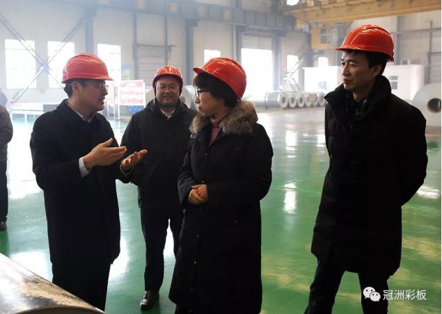 聊城市委副書記、代市長李長萍到龙8国际官网授权調研指導工作